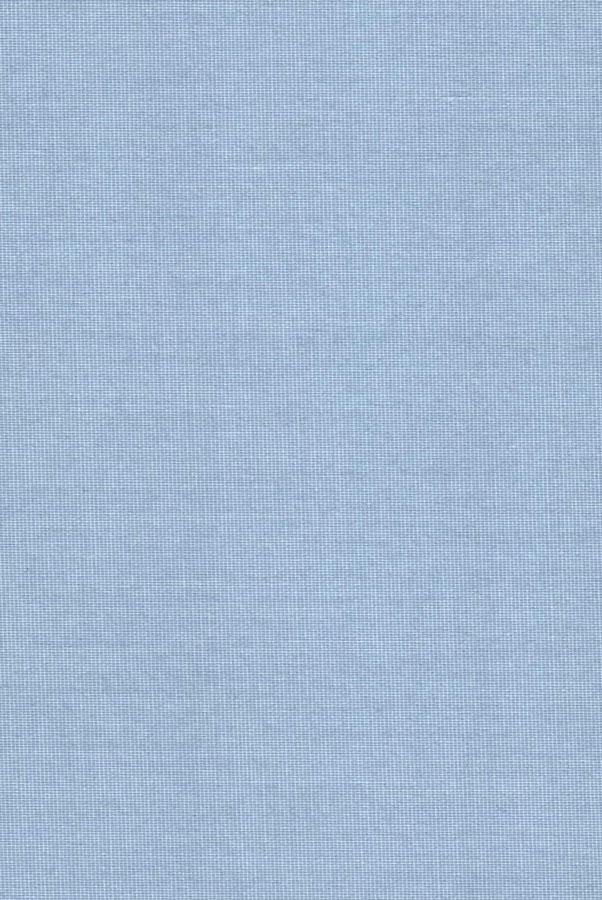1004-ara-goluboj