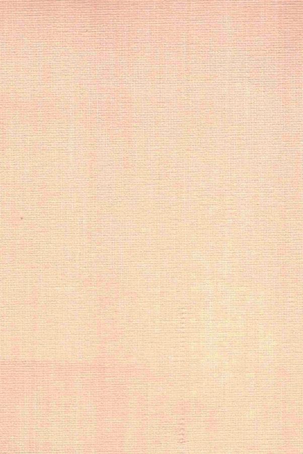 1005-ara-persikovyj