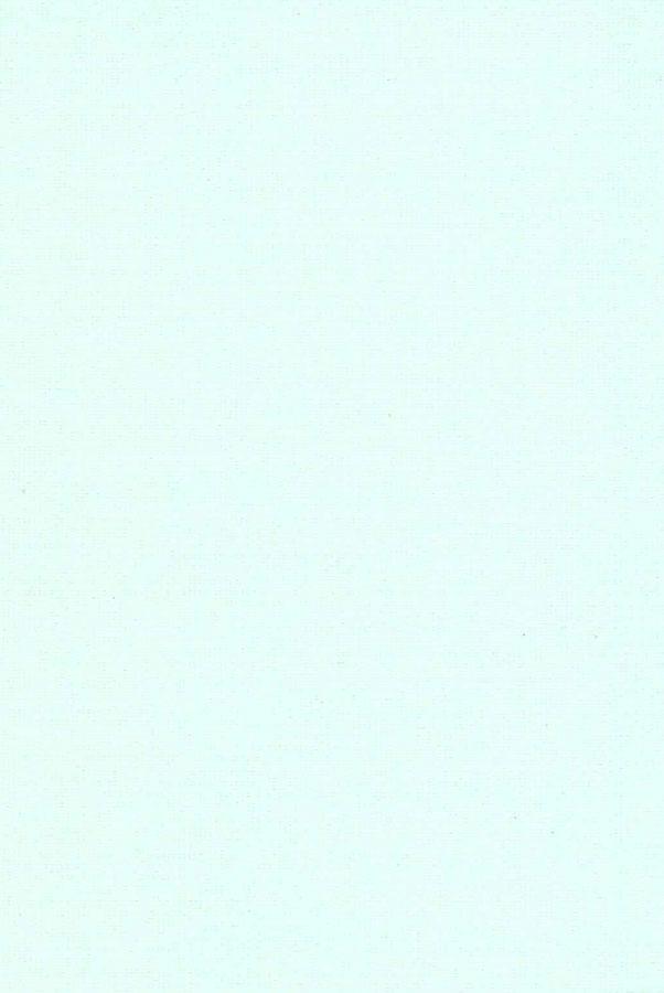 1008-ara-svetlo-zelyonyj