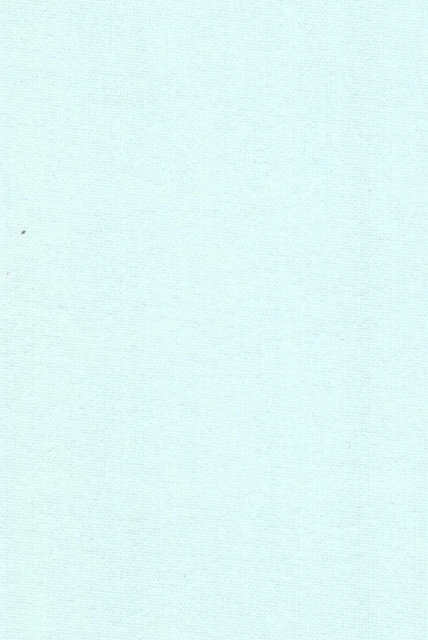 1009-ara-svetlo-goluboj
