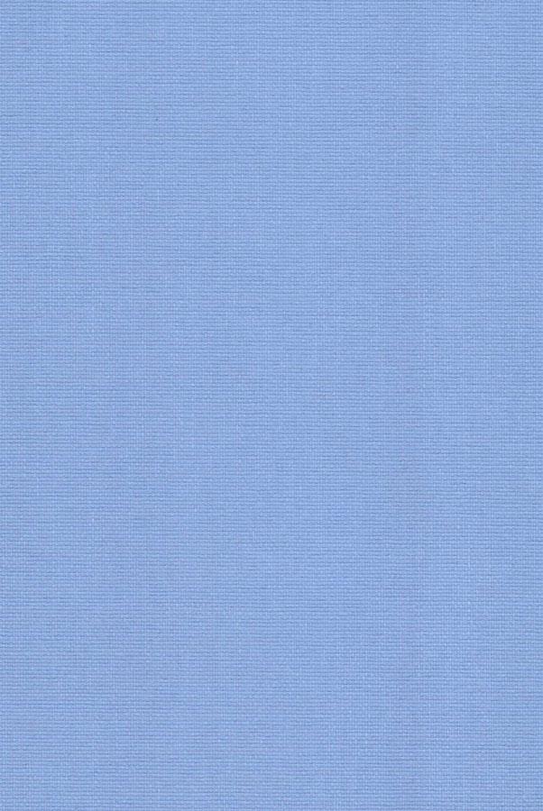 1062-ara-yarko-goluboj