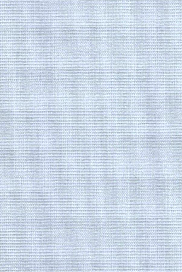1064-ara-lilovyj