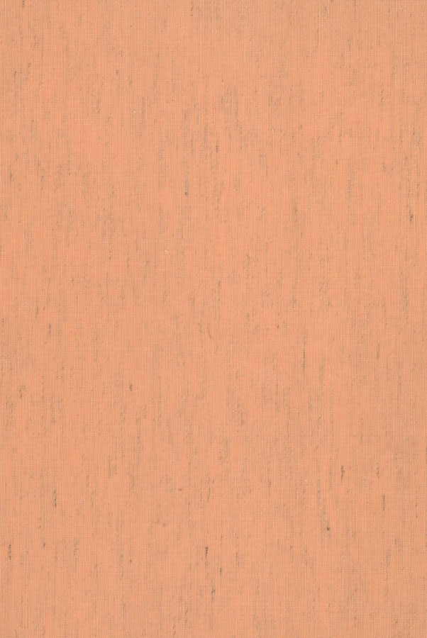 2061-dzhajpur2-abrikos