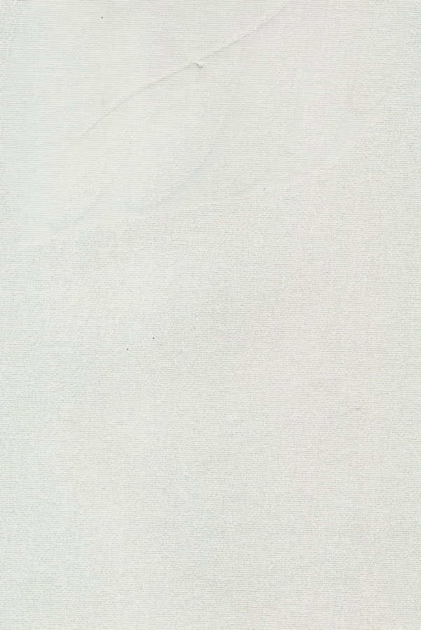 4011-opus-belyj