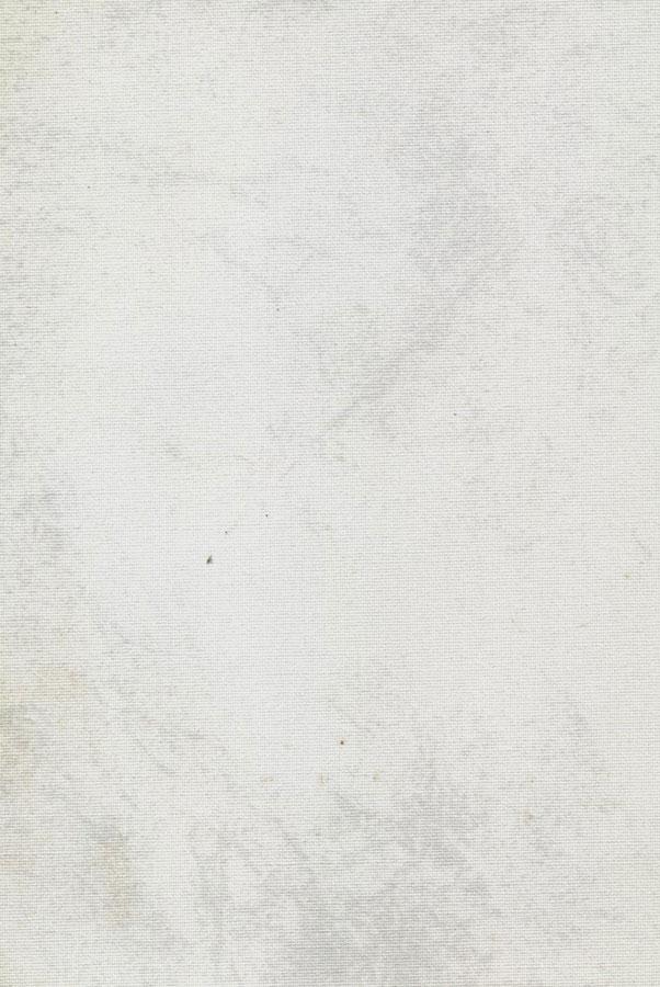 4017-klaudia-belyj