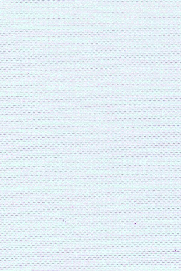 4027-1-tropik-perforirovannyj-belyj