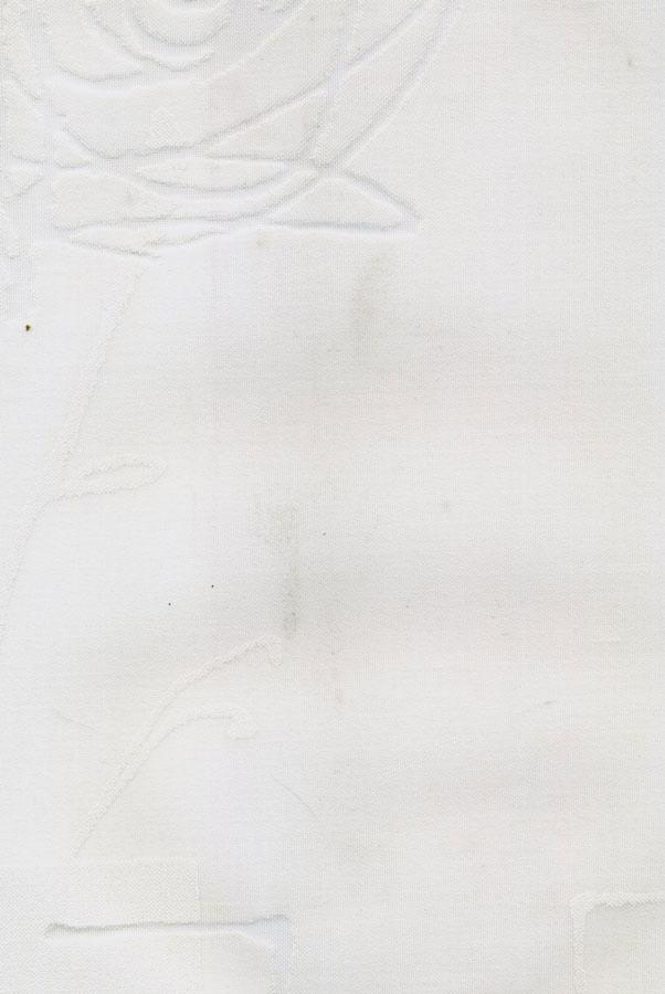 4041-aniora-prozrachnyj