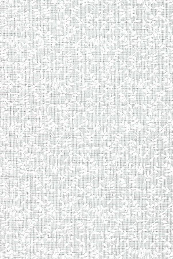6021-fiora-belaya-akaciya