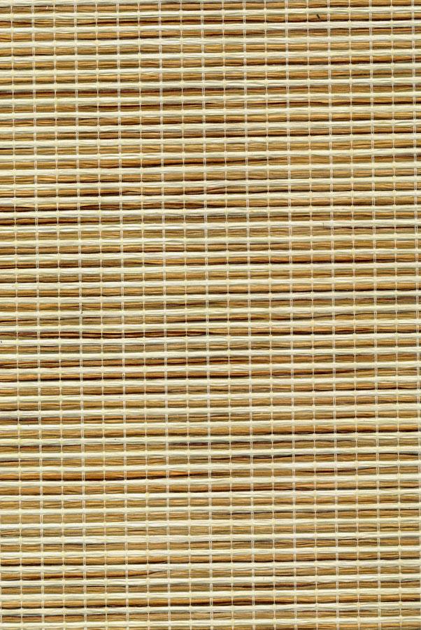 7001-shikan-put-samuraya