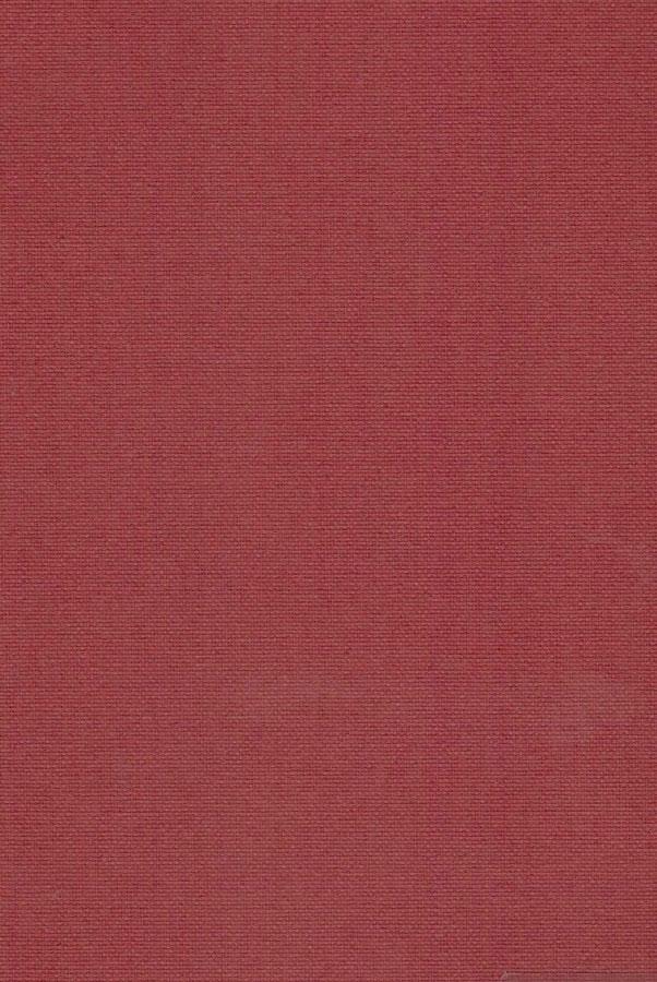 7045-ara-ognenno-krasnyj