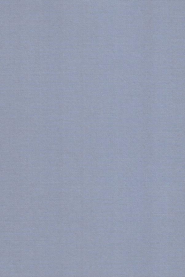 7052-ara-sero-goluboj